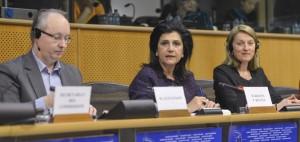 © European Union 2013 EP